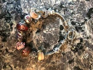 Pandora Bracelet plus 9 charms and 2 stoppers