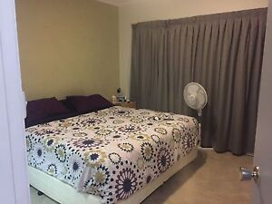 King room w/ Ensuite - Short Term Caringbah Sutherland Area Preview