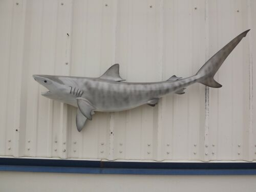 """51"""" Tiger Shark Two Sided Shark Mount Replica - 10 Business Day Production Time"""