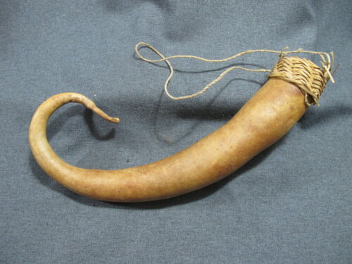 Papua New Guinea Gourd & Fibers Koteka Penis Sheath