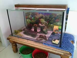 3 Foot Fish Tank. Great Condition. No Leaks. LIGHT. Ornaments. Cedar Vale Logan Area Preview