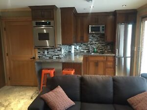 Furnished Bachelor suite apartment for rent