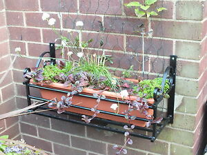 Wrought Iron Wall Planter - Wall Plant Pot Holder- Planter Bracket