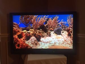 "46"" LCD 1080p HDTV-perfect condition, with original remote $190"