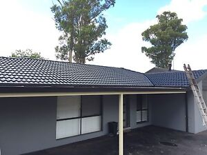 Roof painting and cleaning ( free quote , good price ) Berala Auburn Area Preview