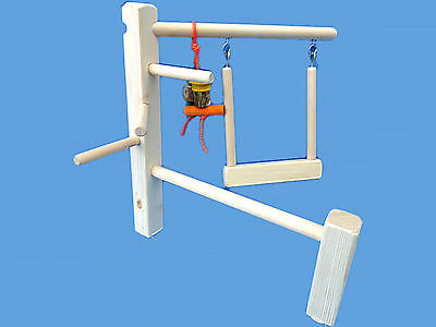 - Bird Play Gym For Cockatiels,Conures,Senegals,Etc.-Bird Toy,Play Stand, Cage Top