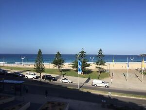 ROOM FOR RENT IN MODERN BEACHFRONT APARTMENT - MAROUBRA Maroubra Eastern Suburbs Preview