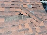 Professional roof repairs at a affordable price!