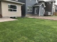 Sod installed from Only 0.99 per sq foot