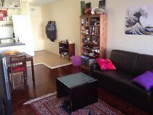 Room for Rent in Upper North Shore Willoughby (couples welcome) Naremburn Willoughby Area Preview
