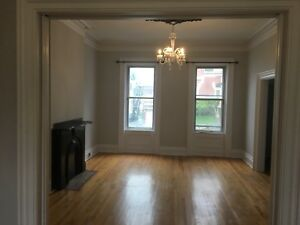 Huge one bedroom 117 Leinster st