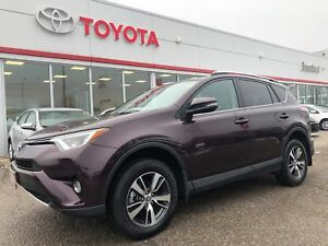 2016 Toyota RAV4 XLE-Power Tail Gate-Bu Cam- Dual Climate-Sunroo