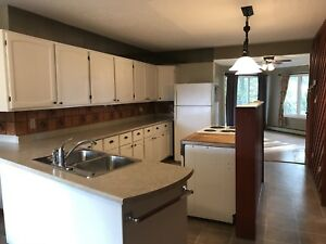 Exceptionally large 2 Bedroom main floor apartment