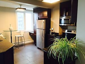 One bedroom  condo apartment in the heart of downtown