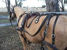 HORSE MEDIUM DELIVERY HARNESS Benalla Benalla Area Preview