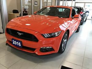 2016 Ford Mustang GT coupe demo competition orange