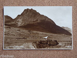 R-L-Postcard-Tryfan-Capel-Curig-Wales-Sheep-Judges