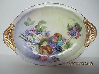 Vintage Hand Painted Porcelain Vienna Austria Platter