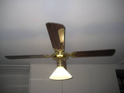 Frosted glass light fittings ceiling fan set