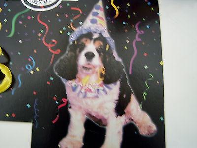 Hundeshirt Hundekostüm Clown 2 tlg Party Geburtstag Fasching Hundebekleidung NEU
