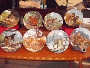 Great Cats of the Americas Complete plates serie