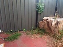 Grass All Gone! $35 @ Reservoir Canungra Ipswich South Preview