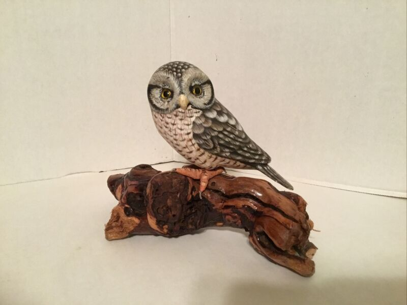Beautiful Northern Hawk Owl Hand Carved & Painted On Drift Wood Statue Figurine