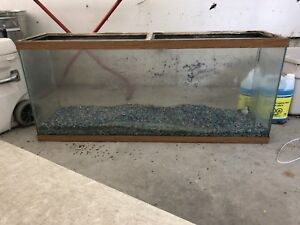 55 Gallon fish tank with everything