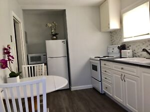Short term rental/Fully Furnished Moncton /available Jan-June