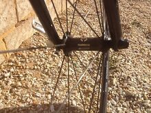 Orbea road bike Golden Bay Rockingham Area Preview