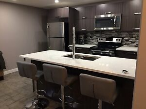 2 bedroom, furnished, basement suite, Broadway