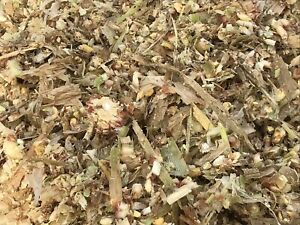 Oats, corn silage and soy beans for sale