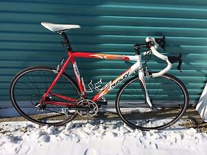 Ridley Scandium Road Bike