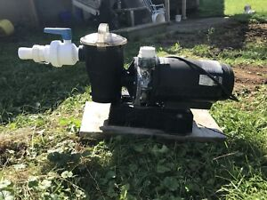 Pool Pump for Sale!