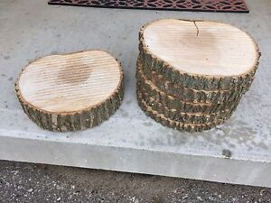 Wood slices and stumps (cut and uncut)
