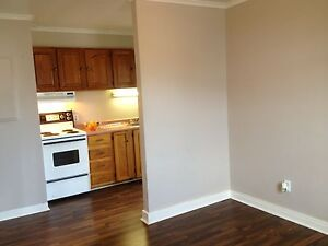 One Bedroom, bright and clean. Central St. John's