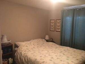 Pretty nice sized room in quiet semi Dieppe