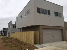 BRAND NEW LARGE STUDIO APARTMENT FOR RENT IN COOMBS Canberra Region Preview