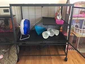 Large cage for small animals