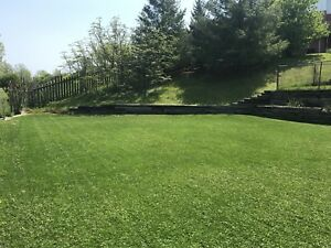 LC LAWN CARE - call today!