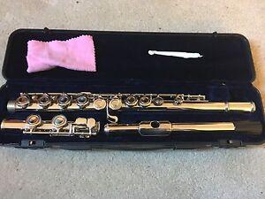 Beginner Student 251 Flute 125 OBO