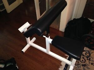 Preacher bench and free weights