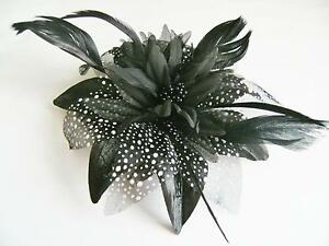 Black and Cream Fascinators 16aa1a6d4b8