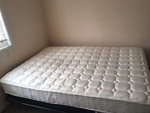 "Spa Full 8"" spring mattress"