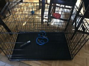 Large Dog crate and accessories