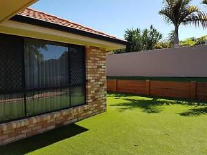 All inclusive bedroom, bills included, WiFi, tidy and friendly North Lakes Pine Rivers Area Preview
