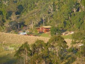 3 rainforest  acres, 2 dwellings, income opportunities Evelyn Tablelands Preview
