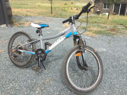 Boys Giant XTC mountain bike