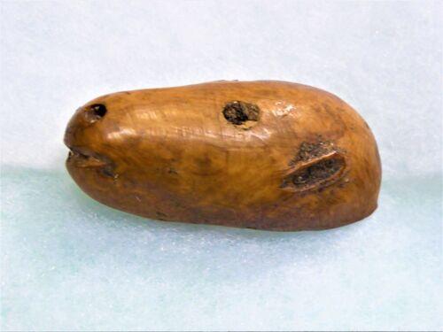 Ancient Rare Alaskan Eskimo Artifact ,Carved Polar Bear Head (Incomplete)