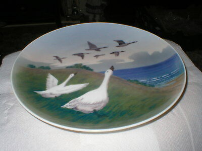 STYLISH ROYAL COPENHAGEN 10in  WALL  PLATE DECORATED WITH GEESE